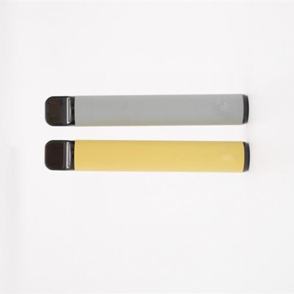 Ceramic Coil Customization All in One Disposable Cbd Vape Pen with 0.5/1.0ml Tank